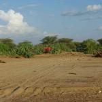 Spurensuche nach Kenia