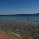 eine ganze Bucht für uns allein - Nationalpark Ras Mohammed