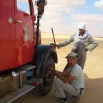 Plattfuß in der Wüste