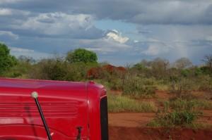 rote Elefanten unter sich
